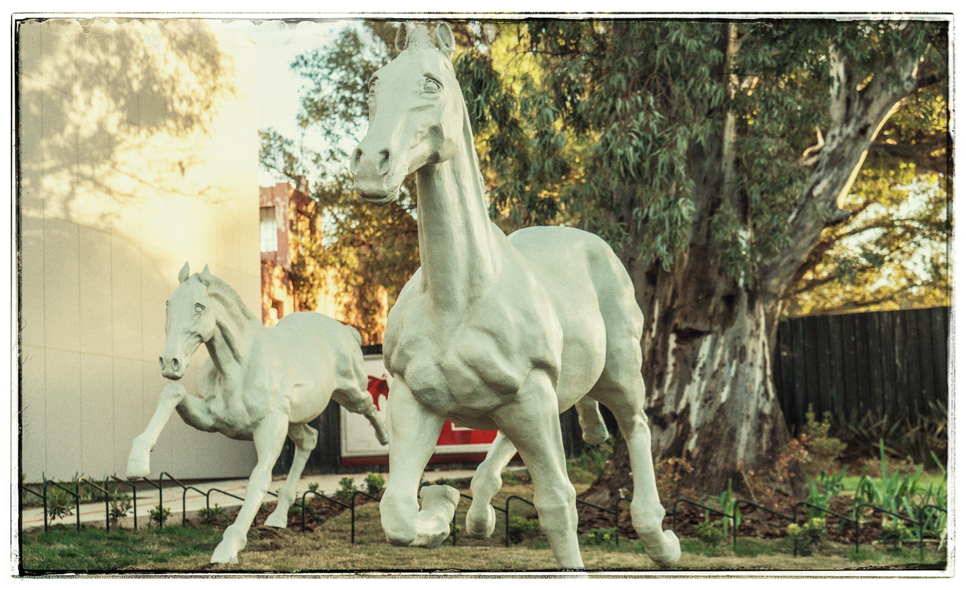 Image result for Llega Horse Parade 2019